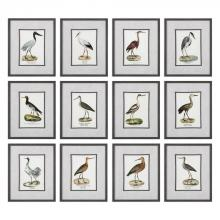 Uttermost 33659 - Uttermost Seashore Birds Prints S/12