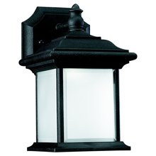 Sea Gull 89101BLE-12 - Fluorescent One Light Outdoor Wall Lantern in Black Finish